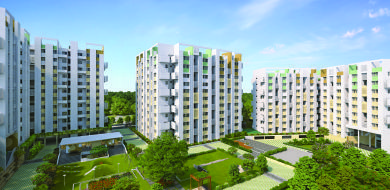 Rohan Anand Project